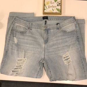 NWT Celebrity Pink Plus Size Jeans